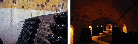 Laurent Perrier caves - DBA Guide